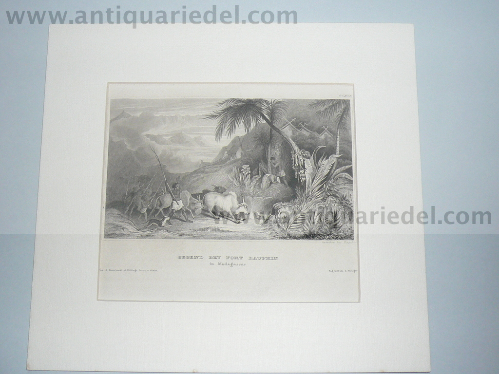 Madagascar,anno 1850, steelengraving