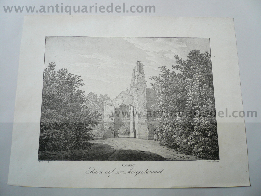 Budapest/Margretheninsel, anno 1825, Kunike Lithographie
