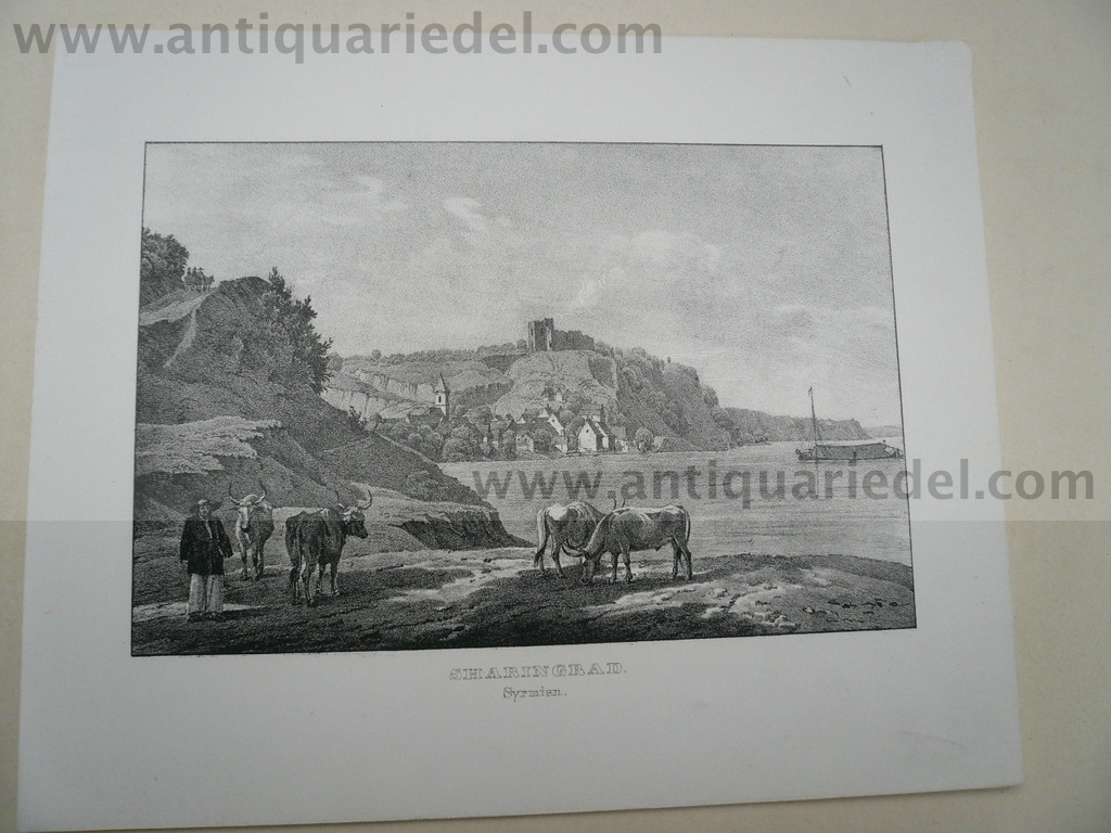 Sharingrad, Danube, steelengraving, anno 1850